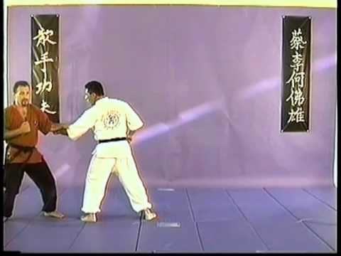 KUNG FU SAN SOO VOL ONE - YouTube | kung fu san soo | Kung
