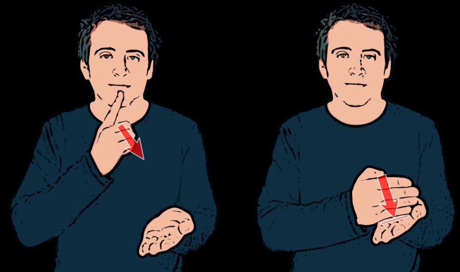 Promise British Sign Language (BSL) British sign