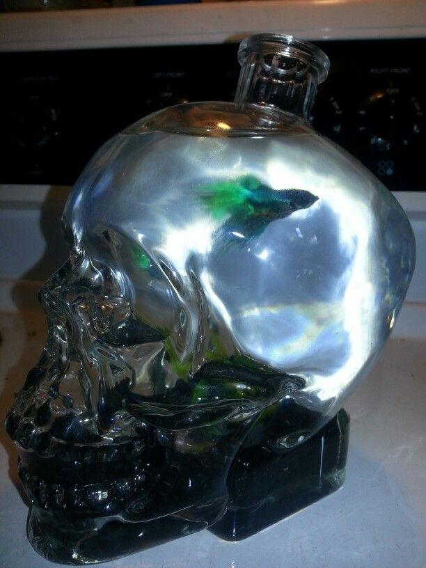 Skull vodka fish tank diy diy crafts that i love for Fish tank skull decoration