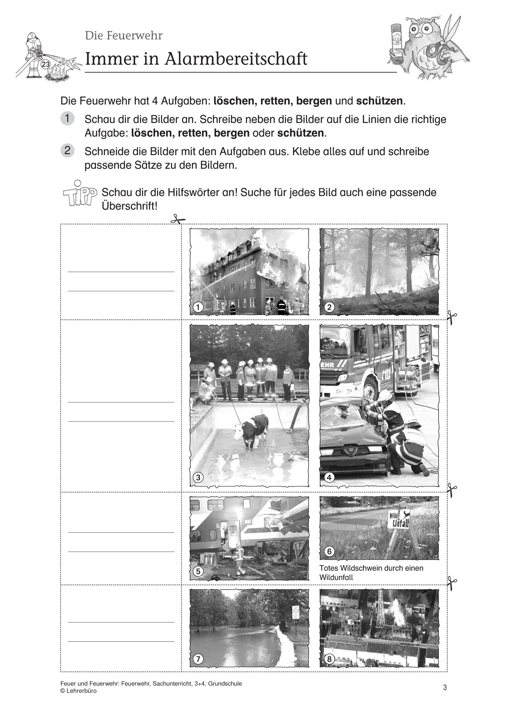 20 Arbeitsblätter 3 Klasse Sachunterricht | Bathroom | Pinterest