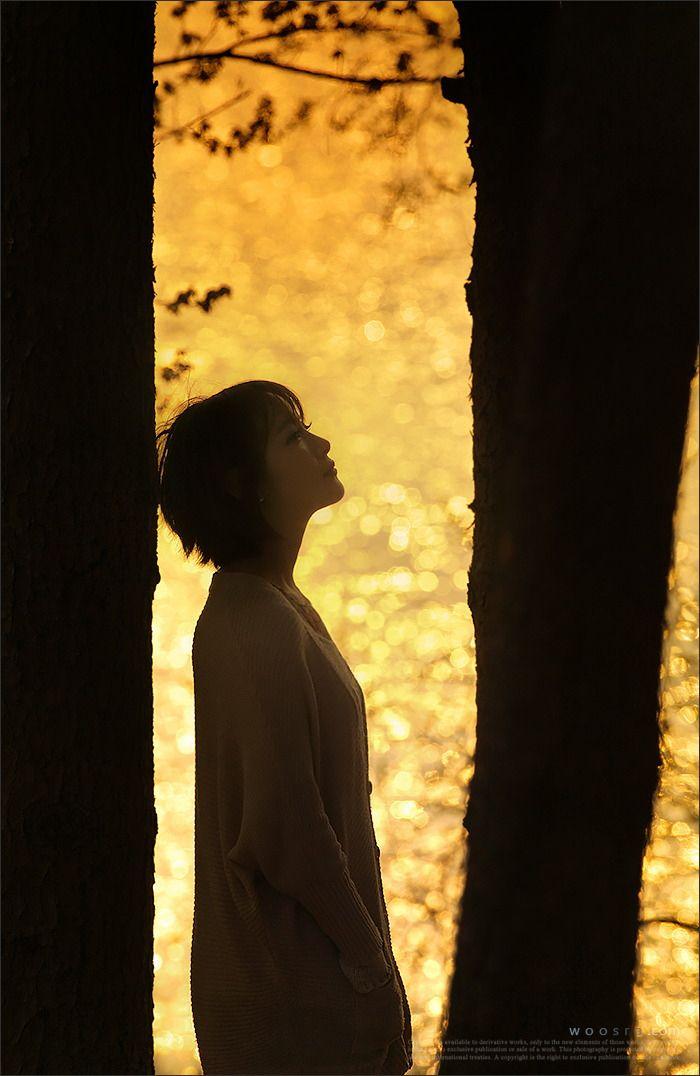 500px에서 활동 중인 Woosra Kim님의 사진 golden...