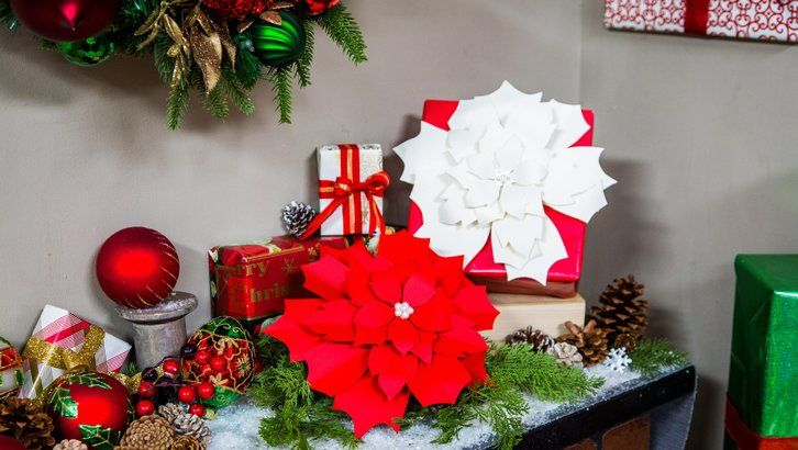 How To Diy Paper Poinsettias Hallmark Channel Family Craft