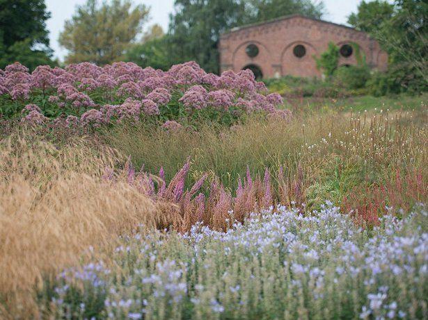 Piet oudolf photographers frank bruse and for Pflanzengestaltung garten