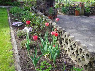 Frühlingsblumen Archives - Seite 4 von 22 - Gartenelfe.info