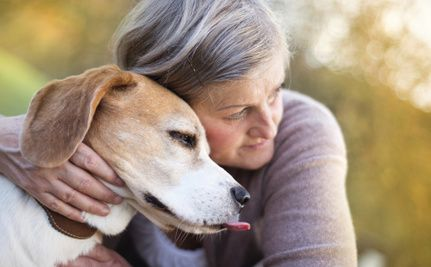 How To Help People In Need Keep Their Pets At Home Senior Dogs Care Pets Dog Care