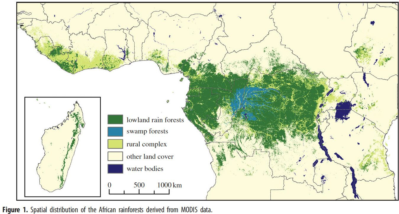 Spatial distribution of African rainforests | geo2 | Rainforest