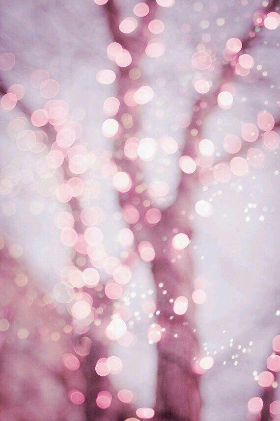 Pastel Fairy Lights Photo Set