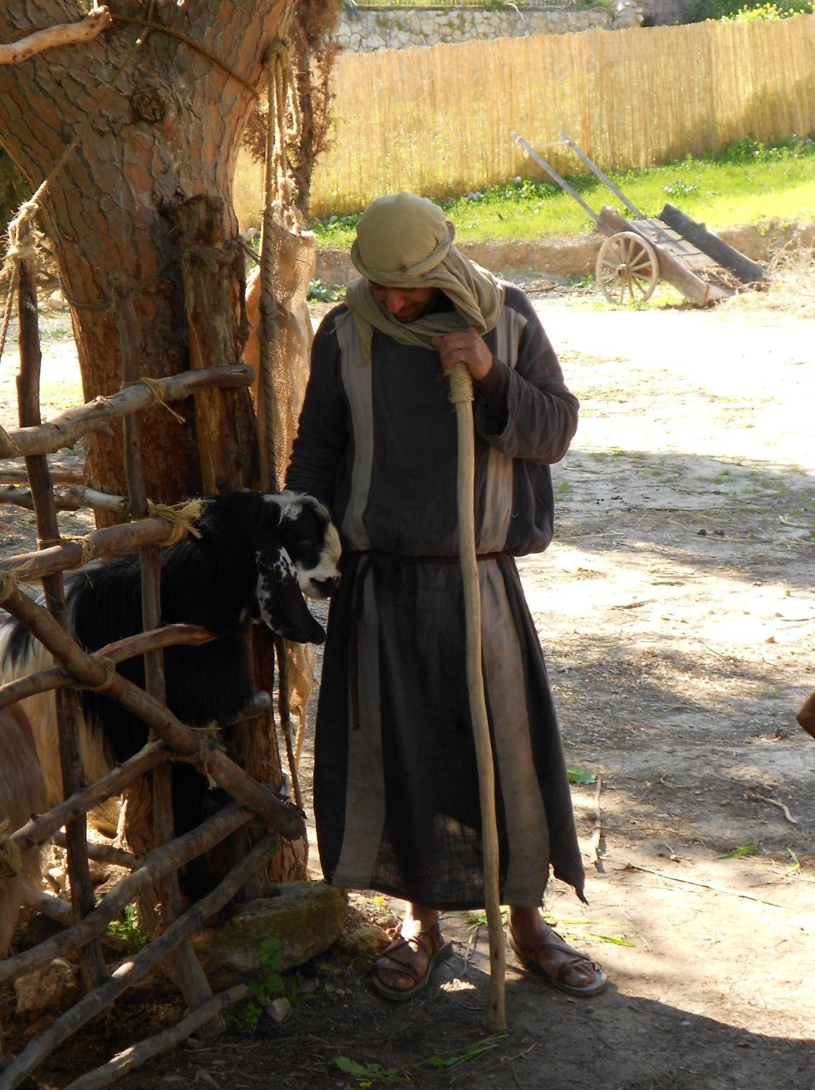 Nazareth Village Shepherd