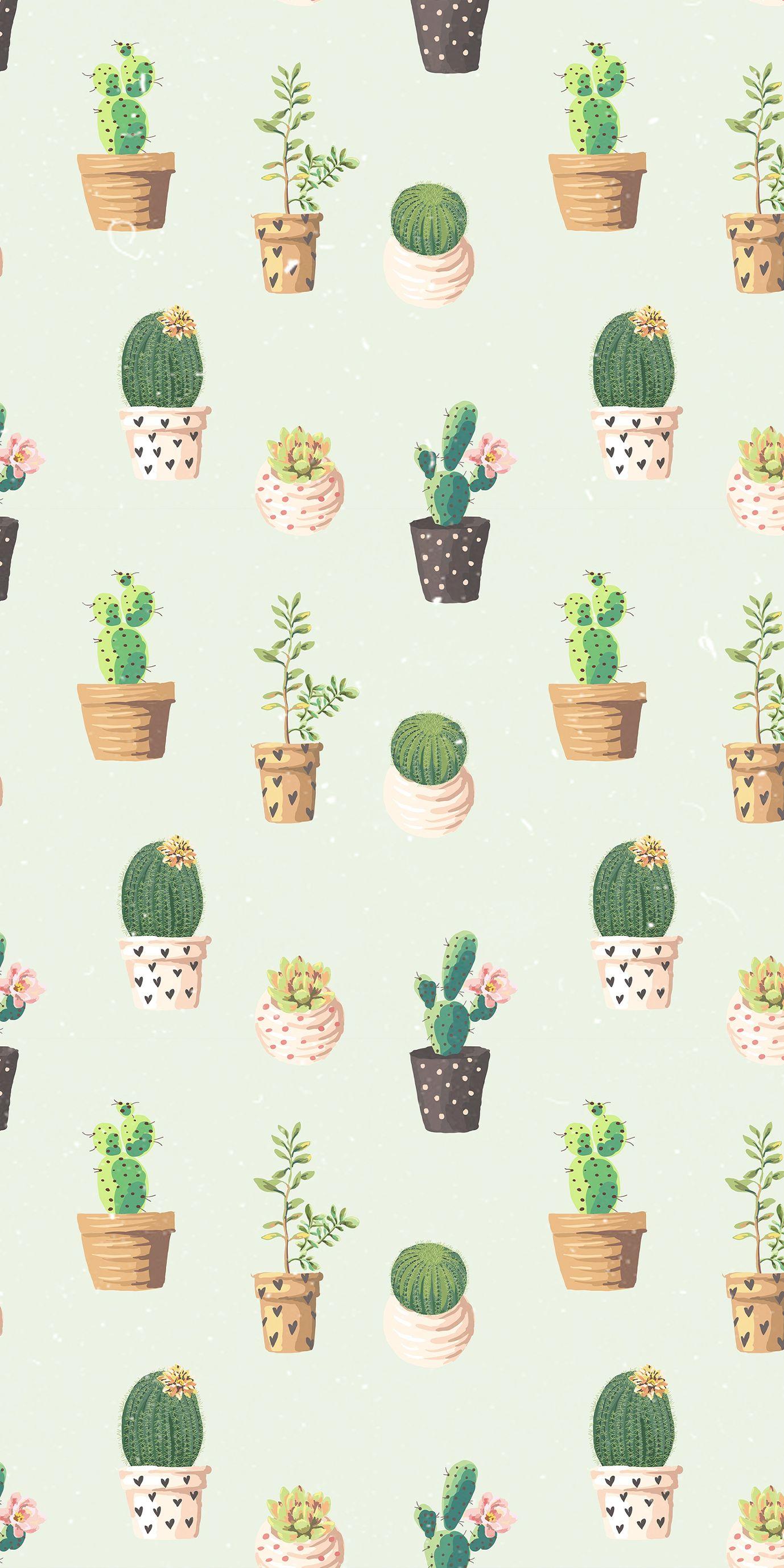 Cactus Wallpaper Patterm Iphone Succulents Wallpaper Iphone Wallpaper Pattern Wallpaper
