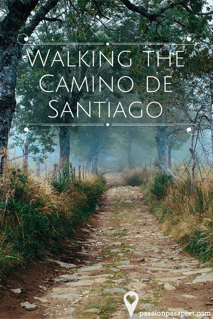 Michael George Portrait Of A Pilgrim In Le Puy Camino De Santiago The Camino Spain Travel - Camino Santiago Passport