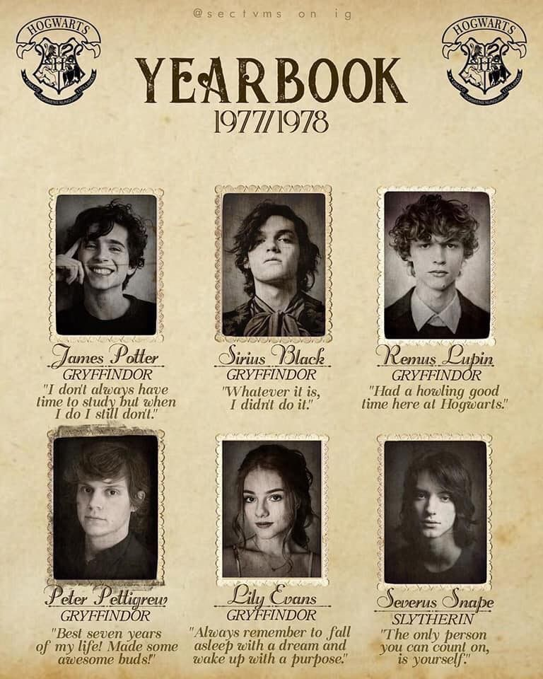 Yearbook3 Harry Potter Collection Harry Potter Cast Harry Potter Pictures