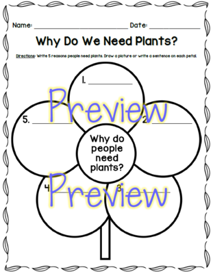 Why People Need Plants Graphic Organizer From Foleybytheriver On Teachersnotebook
