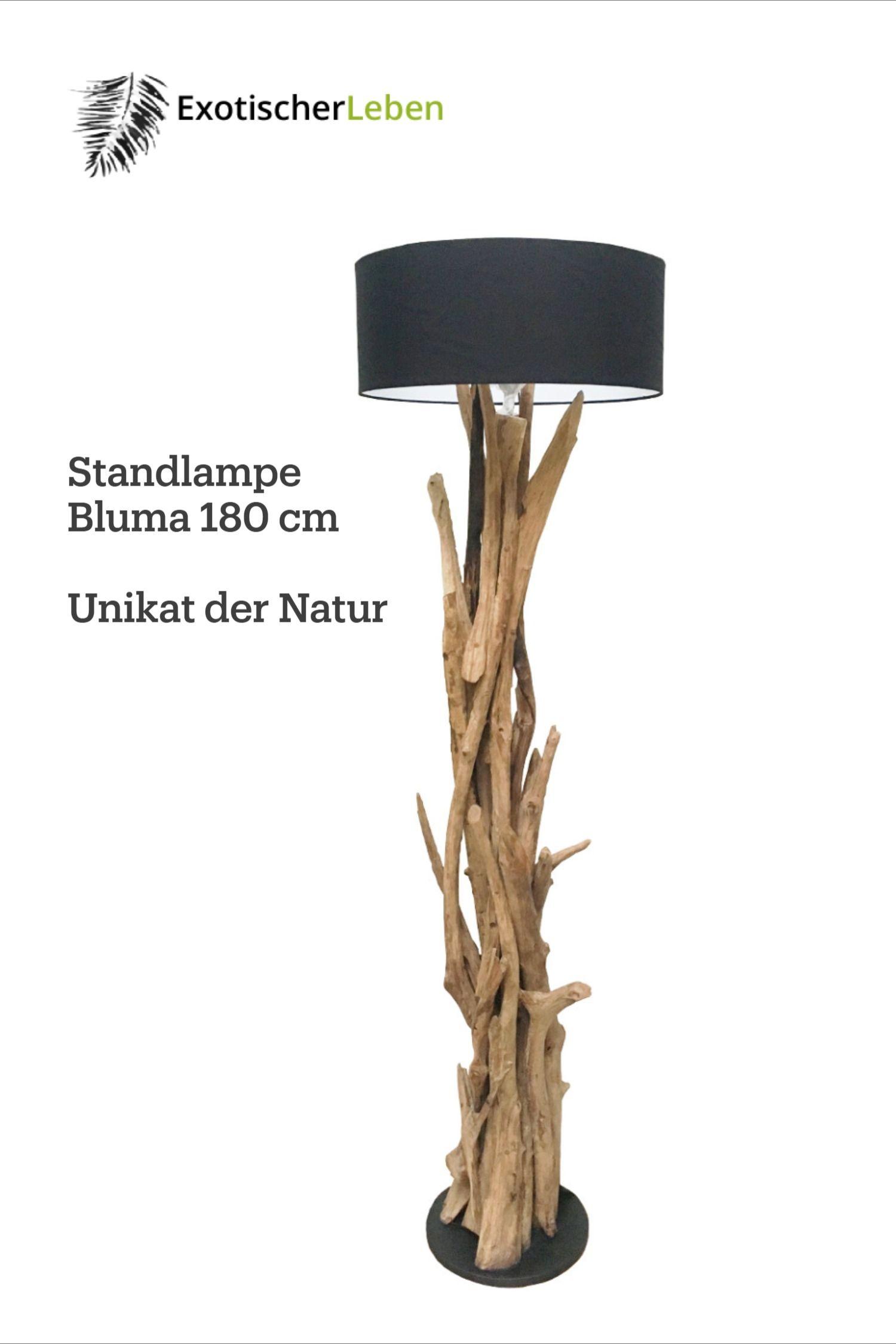 Natur Standlampe Bluma 6 cm aus Teak Wurzelholz in 6  Lampe