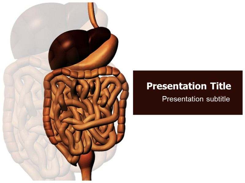 Attractive and conceptual digestive system templates for attractive and conceptual digestive system templates for powerpoint in various shapes and colors make use toneelgroepblik
