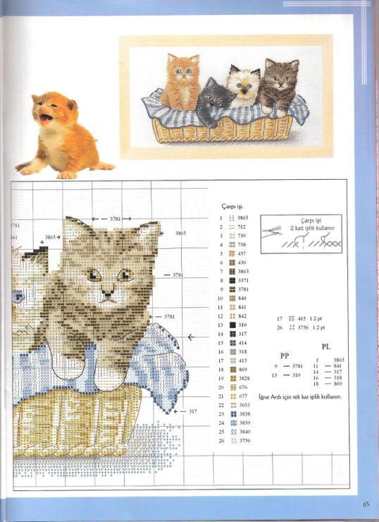 v koši 1/2 | gatitos | Pinterest | Punto de cruz, Puntos y Gato