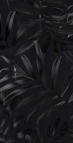 Screen savers black wallpaper backgrounds 19+  Ideas