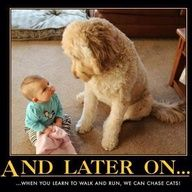 #human-animal bond #babies #dogs