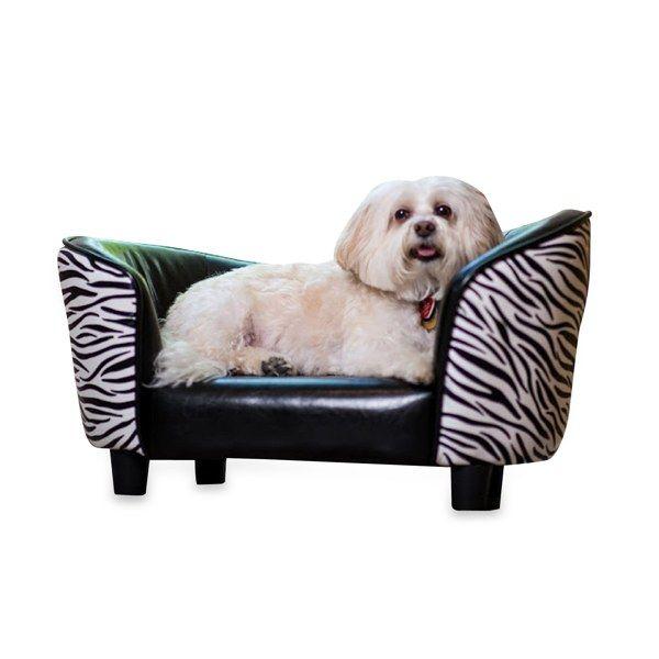 Snuggle Pet Bed Zebra Print Bed Bath Beyond Pets Zebra
