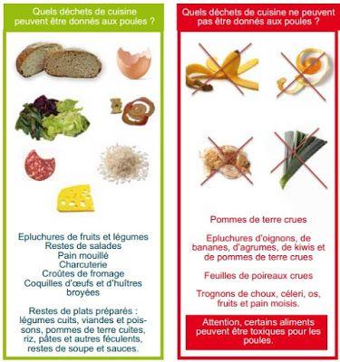 Vive La Retraite Les Aliments A Ne Pas Donner Aux Poules Alimentation Poule Alimentation Nourriture Chien