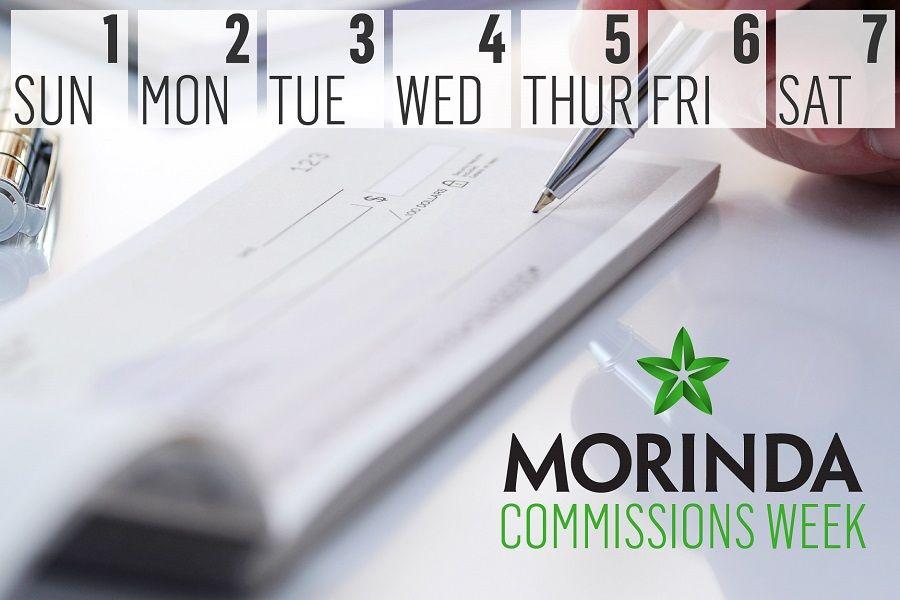 Morinda's  Compensation Plan
