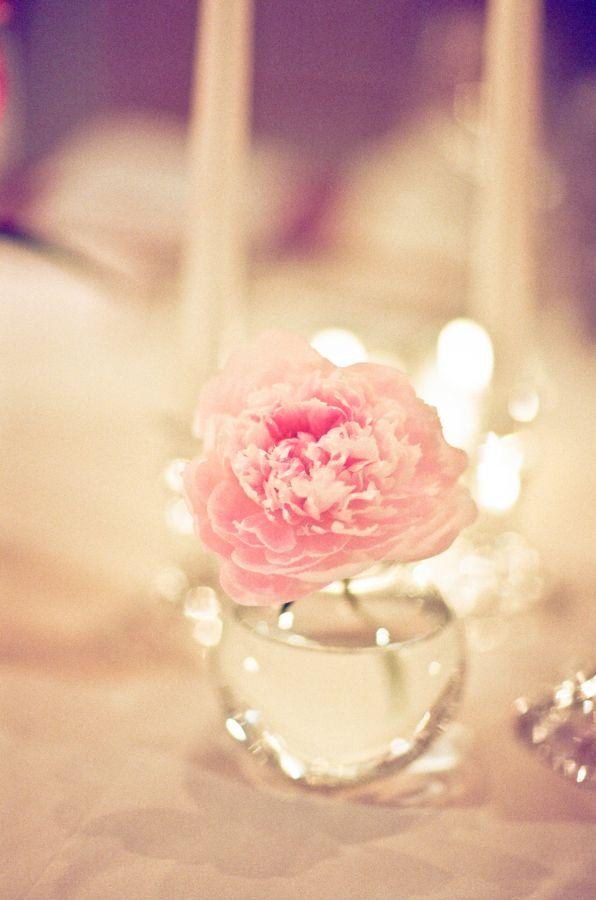 Pink flower in glass bud vase hotel wedding and flower flower pink flower in glass bud vase mightylinksfo