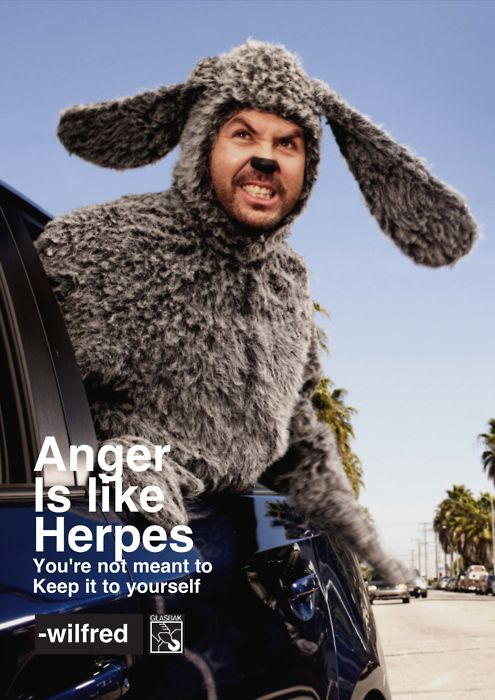 Wilfred Wilfred Tv Show Season Premiere Tv Shows