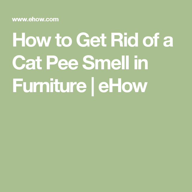 how to get rid of urine smell from couch