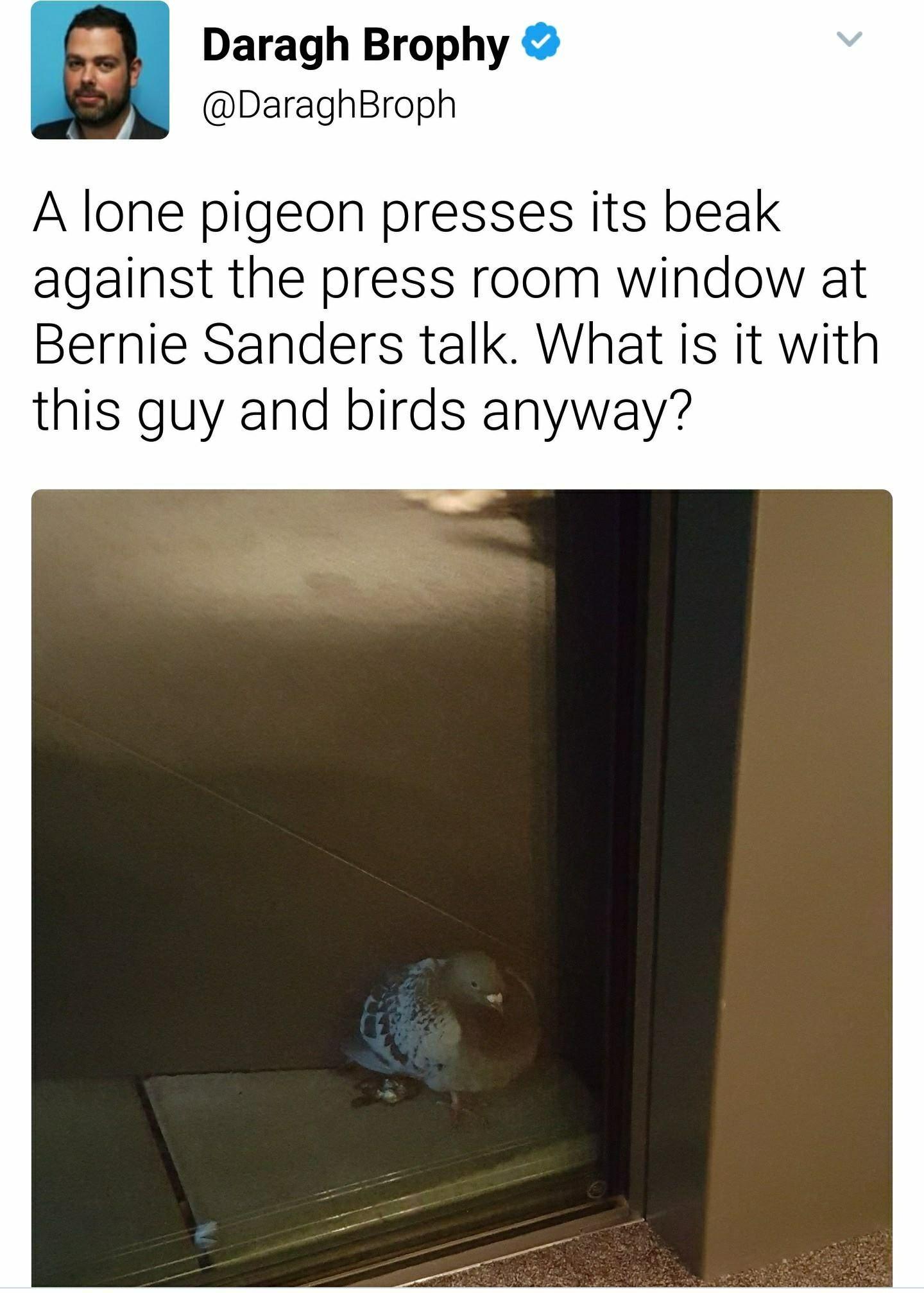 Pin By Eddy Veliz On Random Past Life Life Bernie Sanders