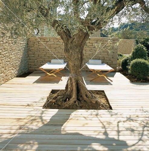Holzterrasse Mit Eingefasstem Baum