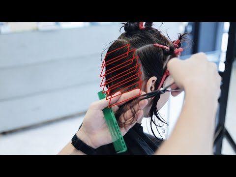 How To Cut Curly Hair Bob Haircut Tutorial Youtube Cosmetology