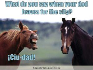 Chistes For Spanish Class Funny Horses Horses Spanish Jokes