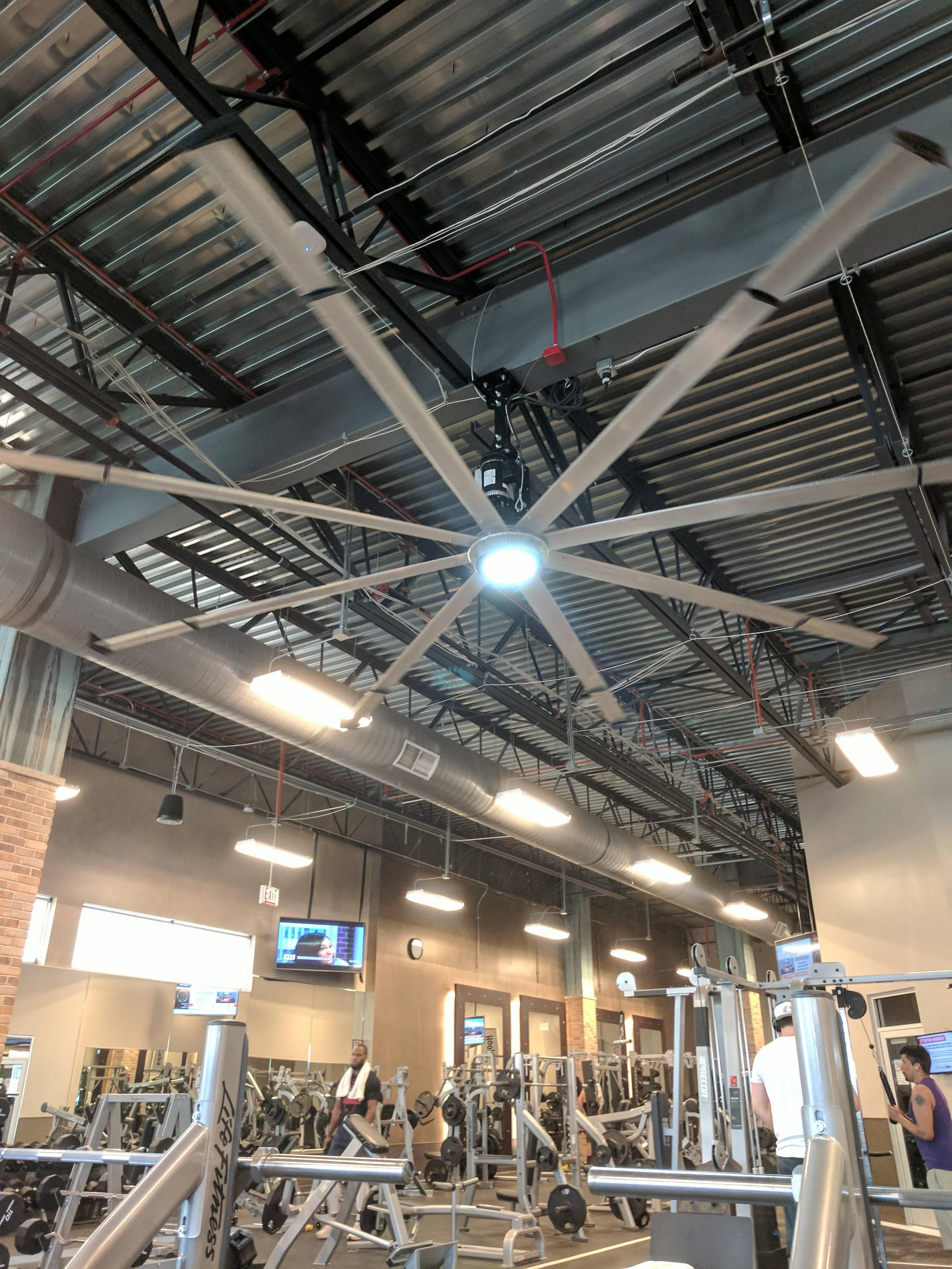 This huge ceiling fan at my gym Pets Funny Pinterest
