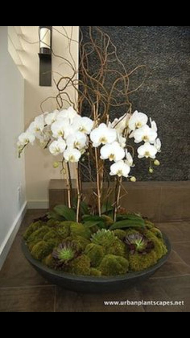 Diy orchid centerpiece craft projects pinterest