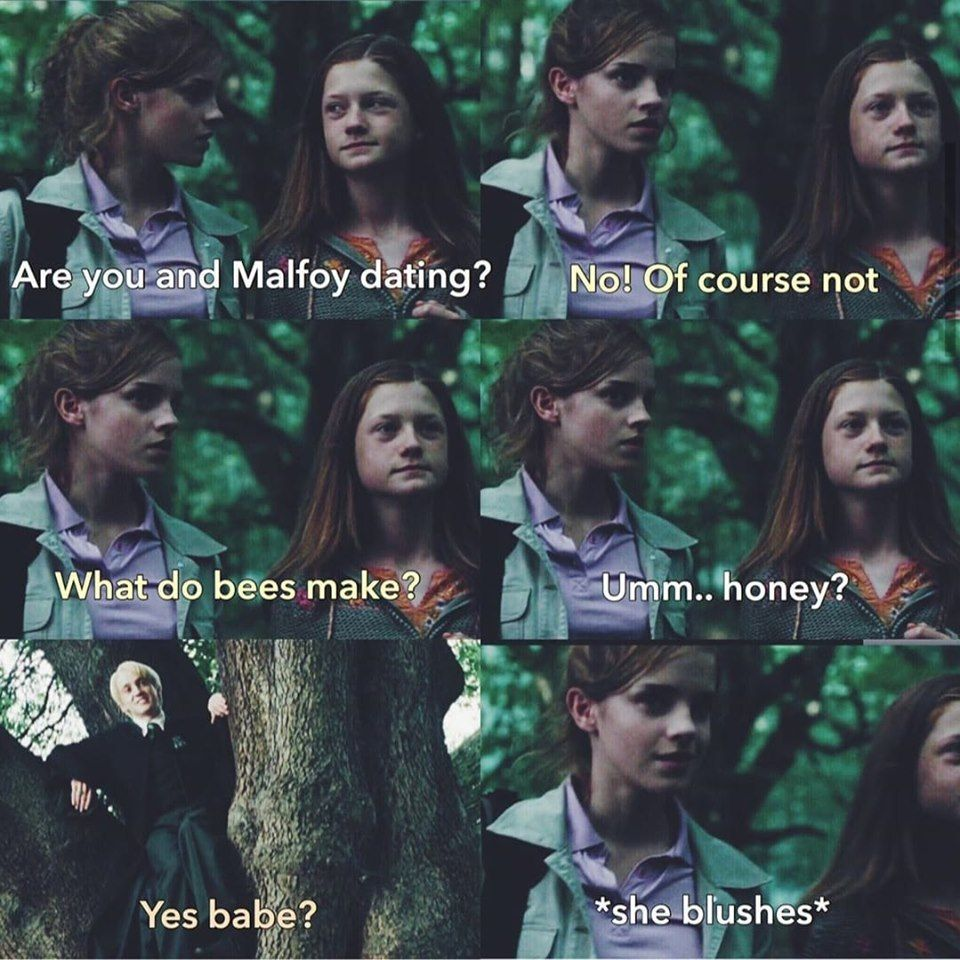 Pin By Bethia Bruh On Another Stuff Memes Harry Potter Comics Harry Potter Cast Draco Harry Potter