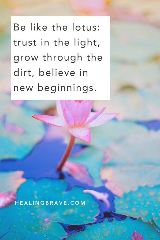 20 Lotus Flower Quotes to Inspire Growth & New Beginnings #lotusflower