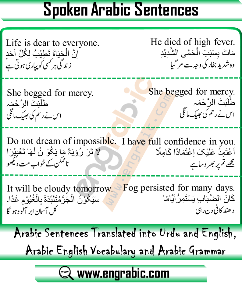 Arabic Sentences Examples Arabic Sentences Spoken Arabic English Learning Spoken