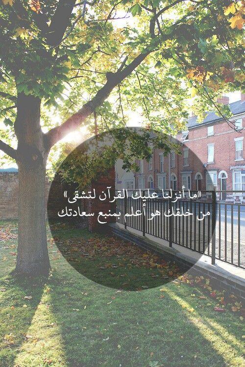 القرآن .. السعادة