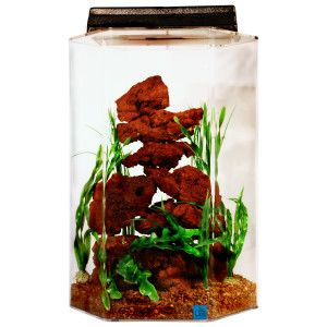 Seaclear 20 gallon hexagon tanks fish boutique for 20 gallon hexagon fish tank