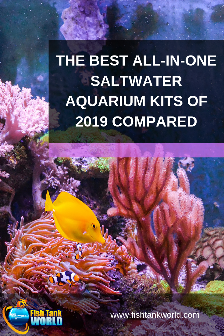 All In One Saltwater Aquarium Kit The 5 Best Starter Packages Of 2019 Aquarium Kit Saltwater Aquarium Saltwater Fish Tanks