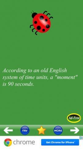 weird facts | Weird Facts