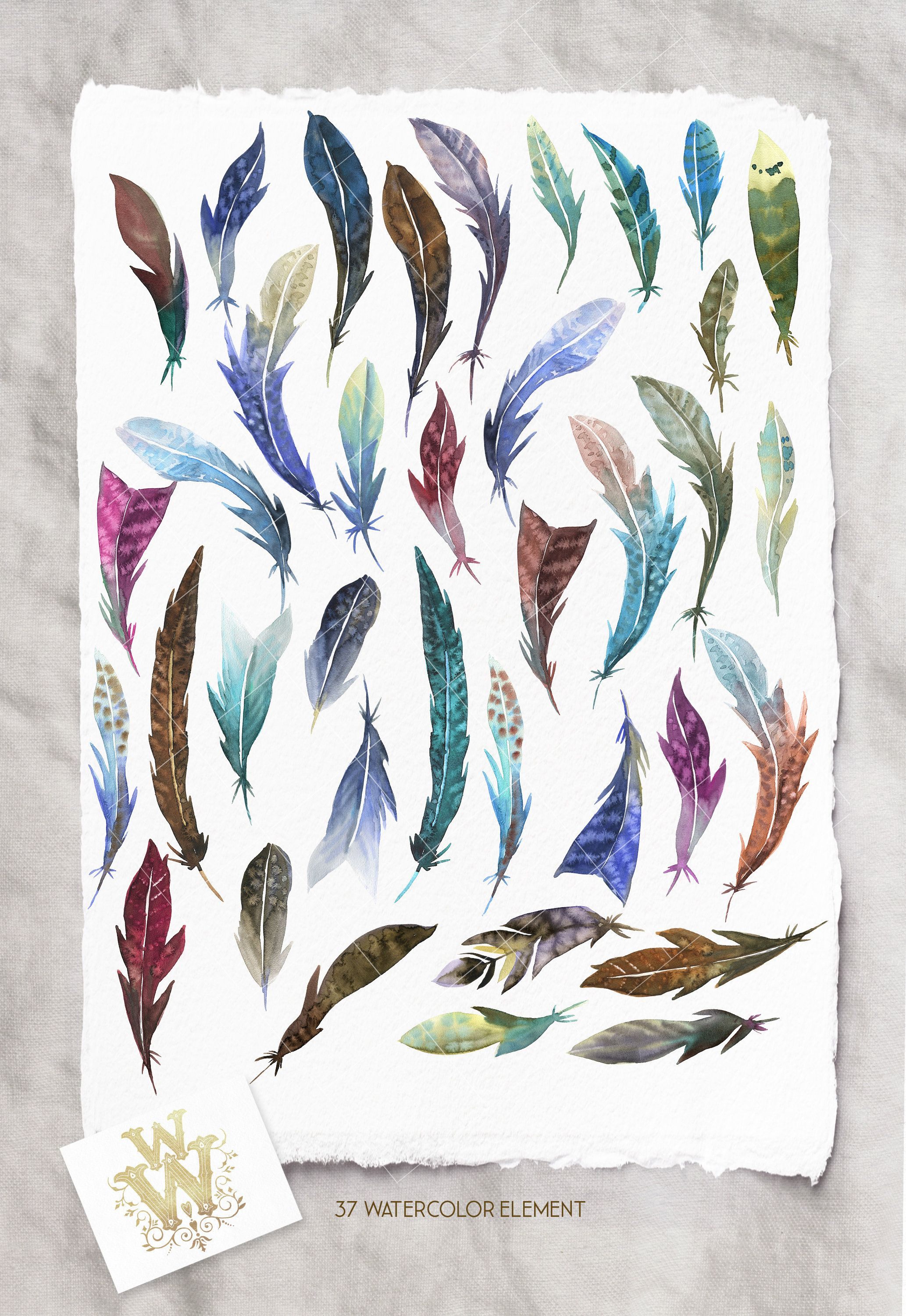 Watercolor Boho Feathers clip art, Bird feather clipart
