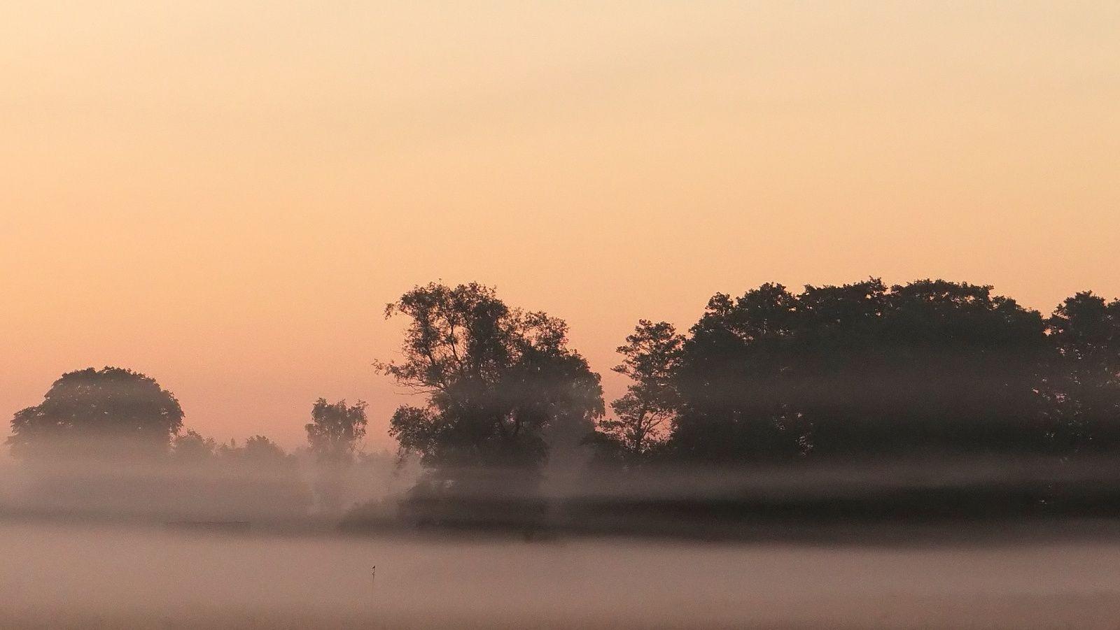 Foggy Morning by **  REgiNA  **  on 500px, 98.6