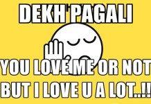 Sun Pagali – Dekh Pagali Latest Attitude Status