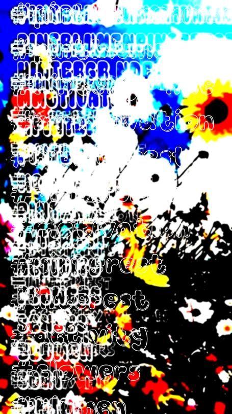 Hintergründe Blumen sort flowers interest pintblumenMotivation pinterest m m Hintergründe Blumen sort flowers interest pintblumenpinterest m m Hintergründe...