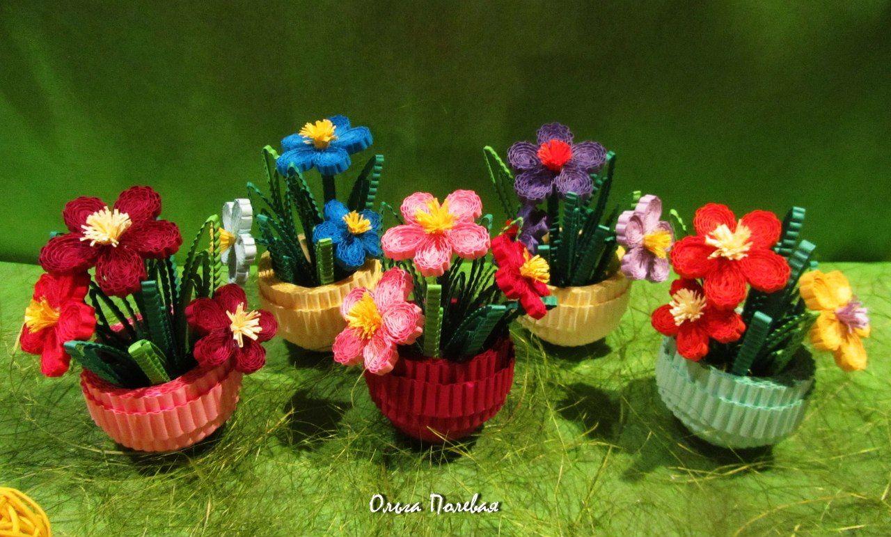 цветы квиллинг в горшочках пошаговое фото обработки лабораторных условиях