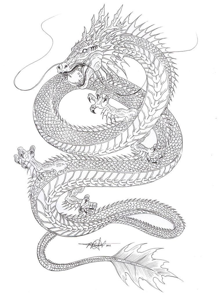 outline sketch of the chinese water dragon gonna color it later