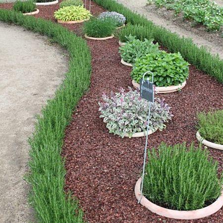 Herb Garden Layout Ideas