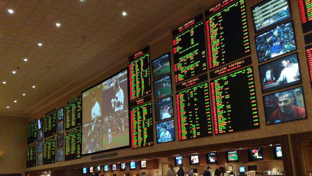 15 Most Exciting And Profitable Sports To Bet On! Sports