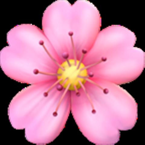 freetoedit sunflower flower Emoji flower, Emoji