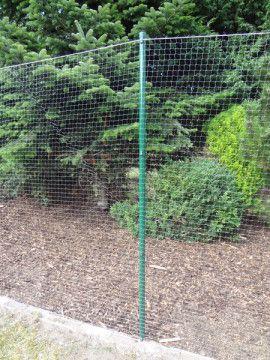 tierheimhilfe korschenbroich bauanleitung katzennetz garten cats pinterest katzen. Black Bedroom Furniture Sets. Home Design Ideas